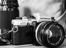 Recover Olympus Digital Camera ORF files